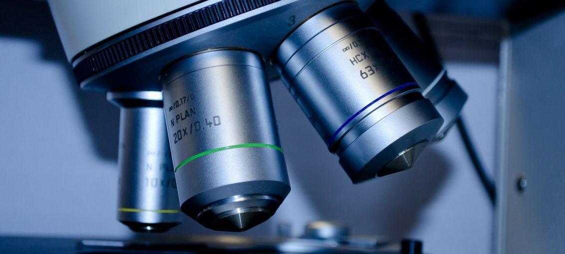 Badanie kości pod mikroskopem